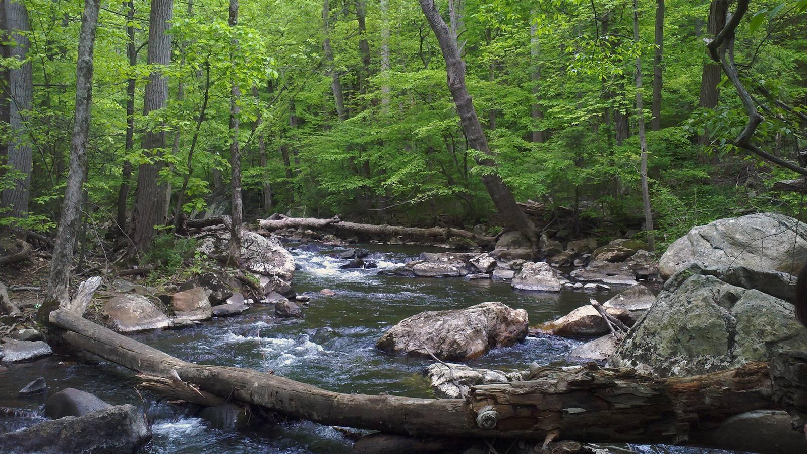 Ken lockwood gorge for Raritan river fishing